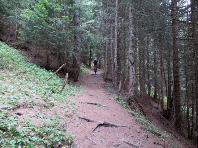 Discesa su sentiero dalla alpe Äbnimatt
