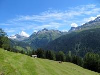 Alpeggio sulle pendici dell'Eggerhorn - sullo sfondo l'Hofenhorn (Punta D'Arbola, 3.236)