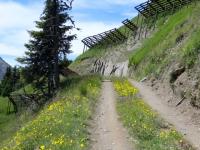 Uno degli ultimi traversi prima dello scollinamento per l'alpe Äbnimatt