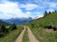 Ultimi metri della forestale prima dello scollinamento per l'alpe Äbnimatt