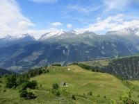 L'alpe Äbnimatt in primo piano, sullo sfondo l'Aletscharena