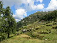 Alpe Sorbella, sullo sfondo il Monte Bo di Valsesia