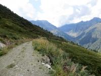 Tratto dell'interpoderale tra l'Alpe Sorbella e l'Alpe Pizzo