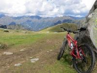 Nei pressi dell'Alpe Pizzo, particolare