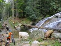 Attraversamento del torrente all'inizio del tratto più ripido della interpoderale della Val Sorba