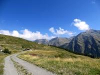 Salita agli alpeggi superiori - alpe Bard Damon, quasi al culmine della salita