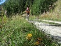 Salita agli alpeggi superiori - la stagione dei funghi sta iniziando!