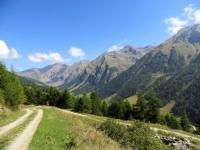 Salita agli alpeggi superiori - alpe Dzette