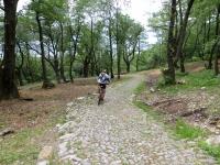 La strada romana che da Monte Ceneri scende a Quartino