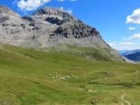 I pascoli sottostanti il Colle di Valle Stretta
