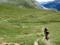 Discesa su sentiero nei pascoli sottostanti il Colle di Valle Stretta