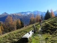 Lungo il sentiero tra Ritzigerstafel e Guferschmatte