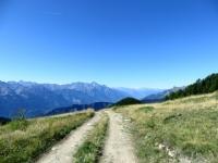 Nei pressi dell'Alpe Champ Chellier Superiore - panorama