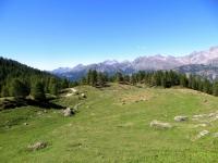I pascoli sottostanti l'Alpe Charey