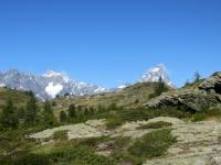 Alpe Champlong - panorama su Cervino e Grandes Murailles