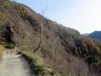 In direzione dei Monti di Lavadee