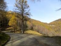 Salita ai Monti di Lavadee