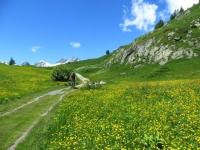 Alta Via della Lötschental in direzione di Weritzalp