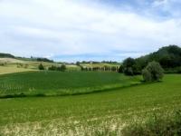 Panorama del territorio circostante Cella Monte