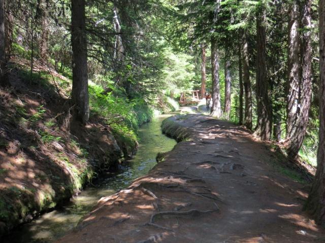 Seguendo il Ru Courtod attraverso il sentiero che parte da Pian delle Dame