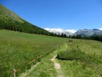 Sentiero presso l'Alpe di Metsan