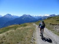 Percorrendo lo sterrato che collega l'alpe Tsecrousa con l'alpe Grand Arpilles