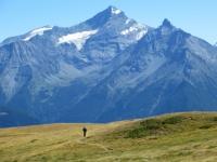 Il sentiero che attraversa i pascoli dell'Alpe Tsa de la Comba - panorama sulla Grivola