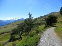 Il sentiero che attraversa la conca di Vetan