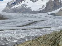 Le caratteristiche lingue nere create dai detriti trasportati dal ghiacciaio dell'Aletsch