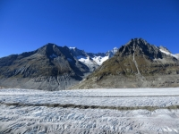 Ghiacciaio dell'Aletsch, vista sull'Aletschhorn (4.195 m) e l'Aletschgletscher