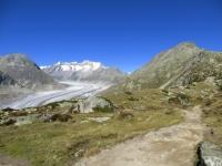 Biel, magnifica vista sul ghiacciaio dell'Aletsch e, sullo sfondo, il Wannenhorn