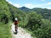 Sentiero per l'Alpe di Esino da Cainallo
