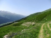 Salita in forestale al Grimselpass, panorama su Goms
