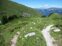 Il sentiero che attraversa Plan Cardaletsch in direzione di Promischur