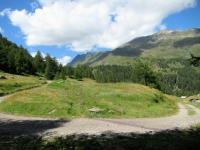 Area circostante l'Alpe Predasca, salendo all'Alpe di Bovarina
