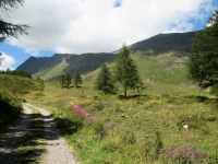 In direzione dell'Alpe di  Bovarina