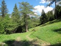 Sentiero Bovarina Bike