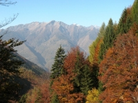 Salita in Valle d'Arbedo - panorama