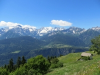Alpe Cadonigo vista dalla strada per Tarnolgio