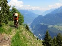 Discesa dall'Alpe di Chiera (tratto non presente in traccia causa sentiero impraticabile per abbattimento alberi)