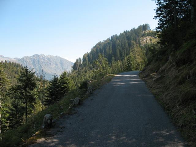 Salita per l'Alpe di Cadinello