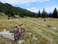 Alpe Foppascia