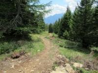 Il sentiero che scende dall'Alpe Foppascia