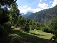 Panorama  sull'Alpe Paschirolo percorrendo lo sterrato che collega Tengia con Quadréda