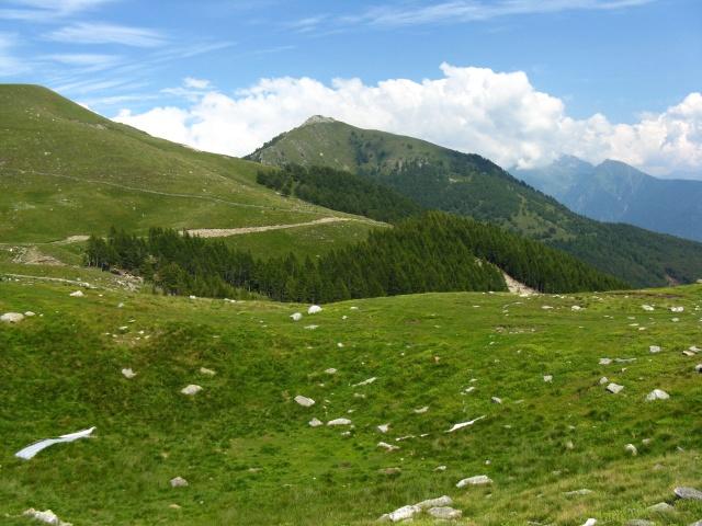 Panorama sull\'Alpe gigiai