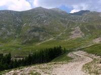 Alpe gigiai