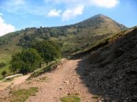 Termine della discesa dalla pendici del Monte Croce di Muggio - inizio sterrato
