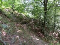 Il sentiero che collega l'Alpe Travello con il fondovalle (Coimo)