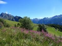 Salita al Col Champillon - panorama