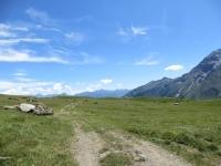 La poderale che attraversa il verde alpeggio in prossimità del lago del Moncenisio